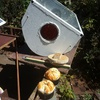 Solar cooking with evacuated tubes